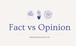 khác nhau giữa fact và opinion