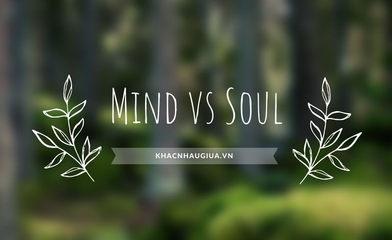 Khác nhau giữa Mind và Soul